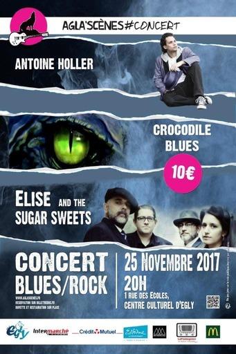 affiche concert novembre 2017